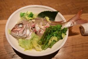 soholm南部美人春の魚